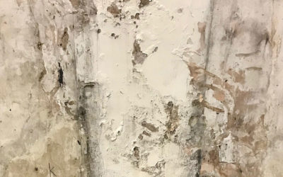 Commercial Mold Abatement – Dealing With Mold In The Workplace