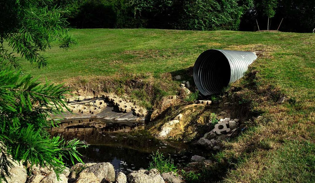 What To Do About a Backed Up Sewer Line