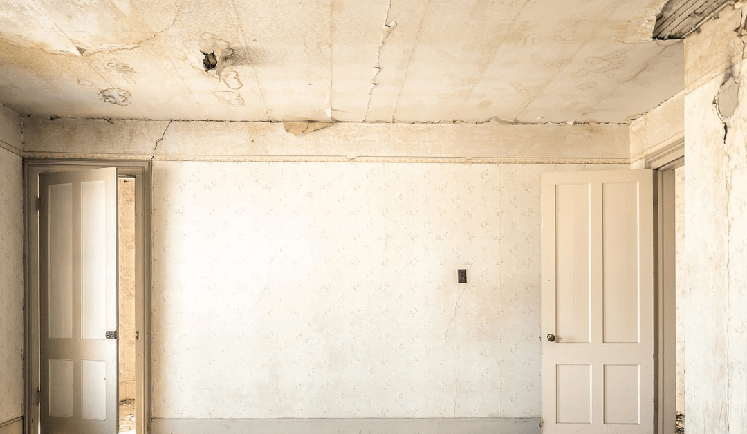 Can You Still Sell a House with House Mold