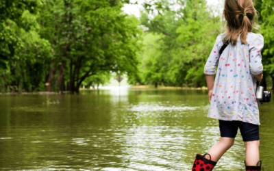 Prevent Restoration Cleaning Services With These Flood Preparedness Tips