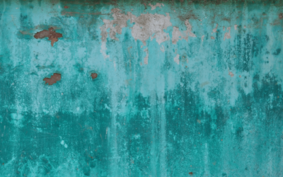 Get a Black Mold Test Before Buying a Property With Mold