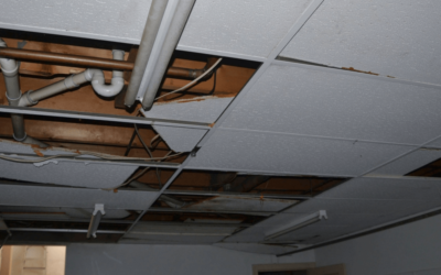 A Water Remediation Company Wants to Prevent Your Home From Water Damage