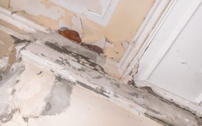 Property Restoration: Keep Your Home Safe While on Vacation