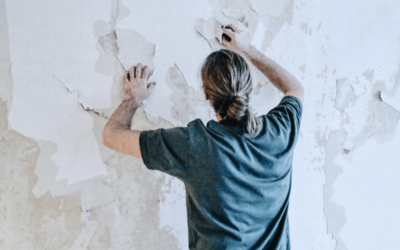 Mold Affects Property Value – Call for Professional Mold Removal Today
